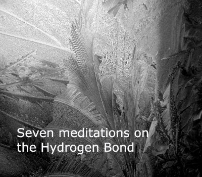 Seven Meditations on the Hydrogen Bond