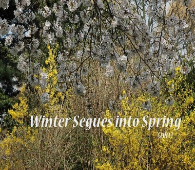 Winter Segues Tile
